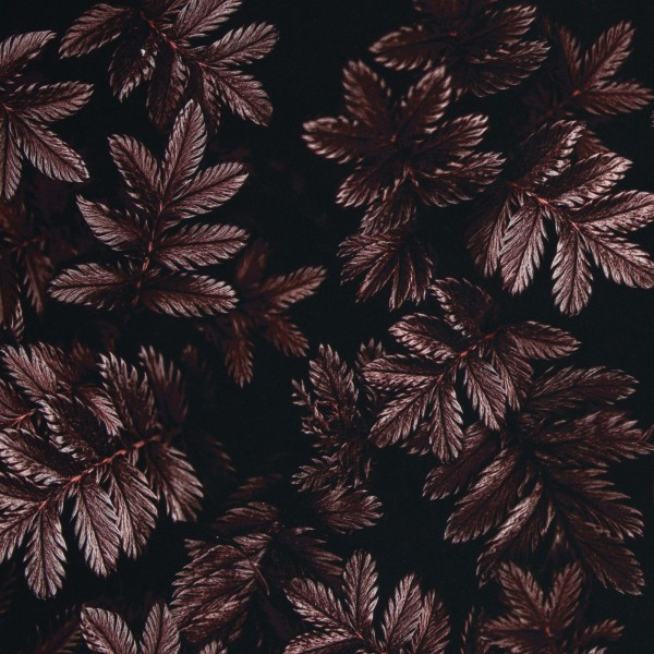 Dark Leaves by Thorsten Berger, Viskose Webware