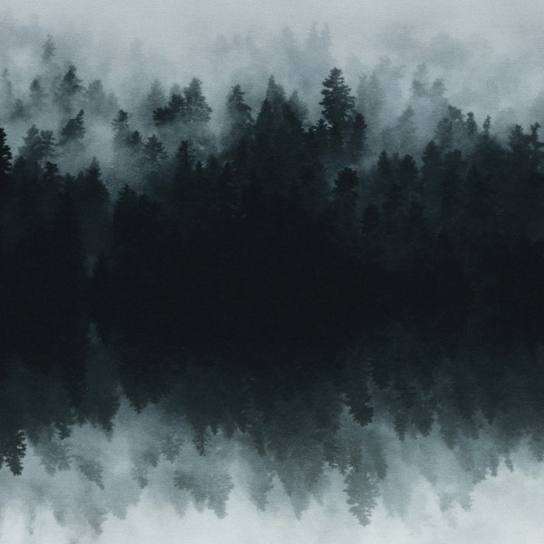 Gloomy Hills by Thorsten Berger, French Terry