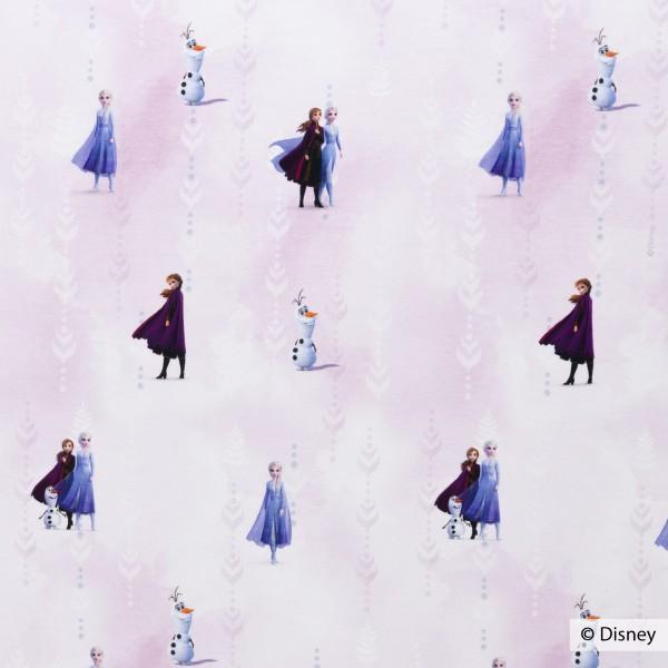 Disney - Frozen 2, Jersey Baumwolle